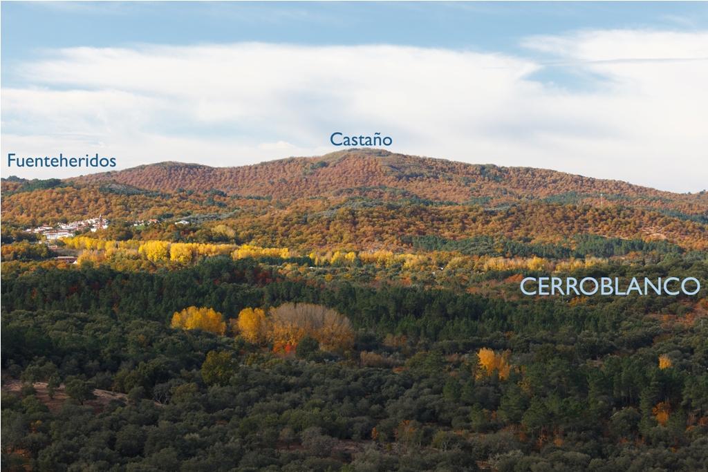 CerroBlanco